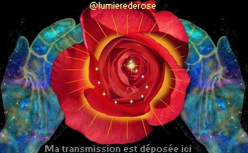 lumierederoseillumination2.jpg